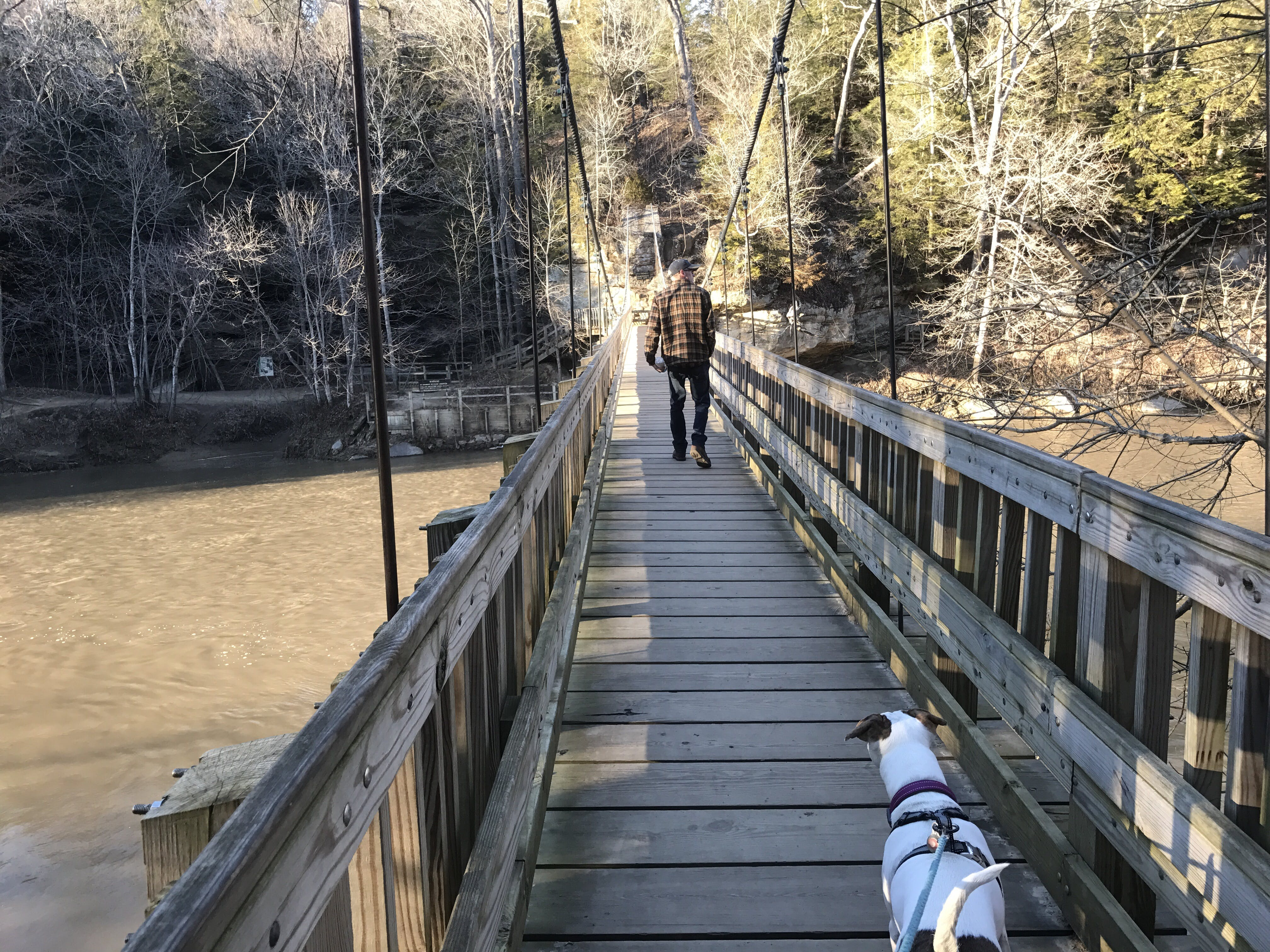 A man and a dog walk together across a river on a bridge at Turkey Run State Park