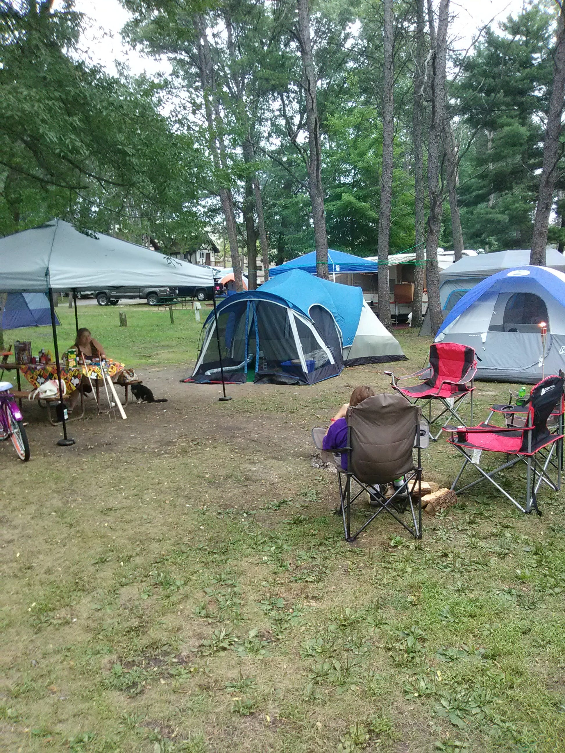Sherwood Forest Camping >> Sherwood Forest Campgrounds Wi The Dyrt