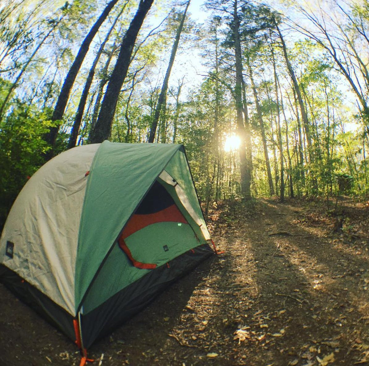 fisheye view of a green tent surrounded by trees at a cloudland canyon campsite