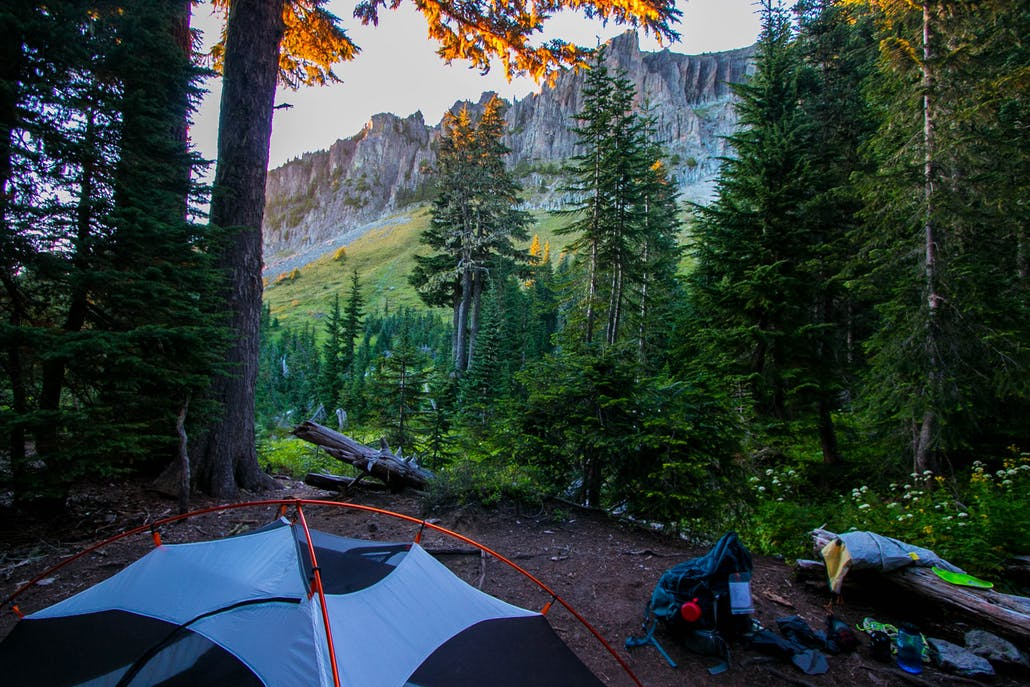 a primitive campsite in yosemite looks at the famous cliffs from below