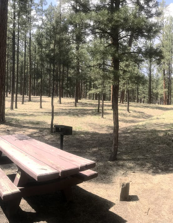 The Best Camping In New Mexico 100 Nm Campgrounds The Dyrt
