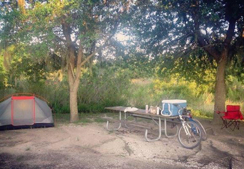 Florida State Parks Camping Map.Alafia River State Park Fl The Dyrt