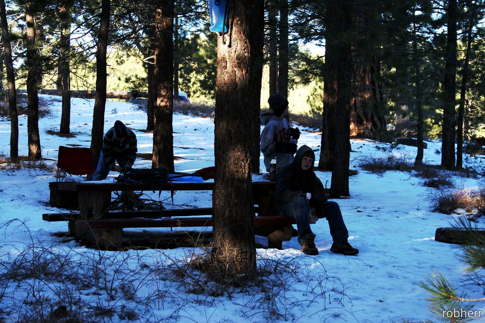 Chula Vista Campground at Mt. Pinos, CA   The Dyrt