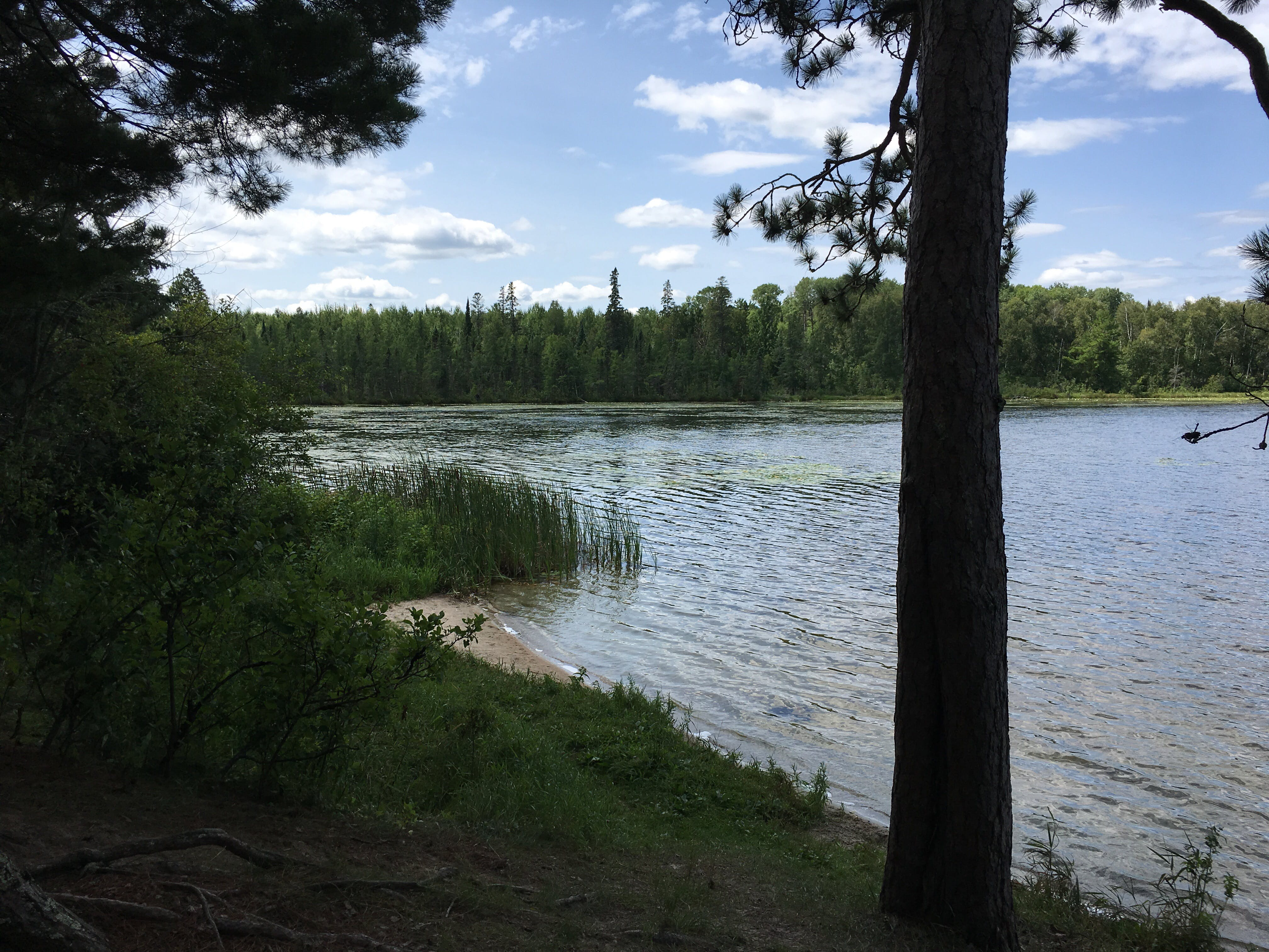 Webster Lake Campground, MN | The Dyrt