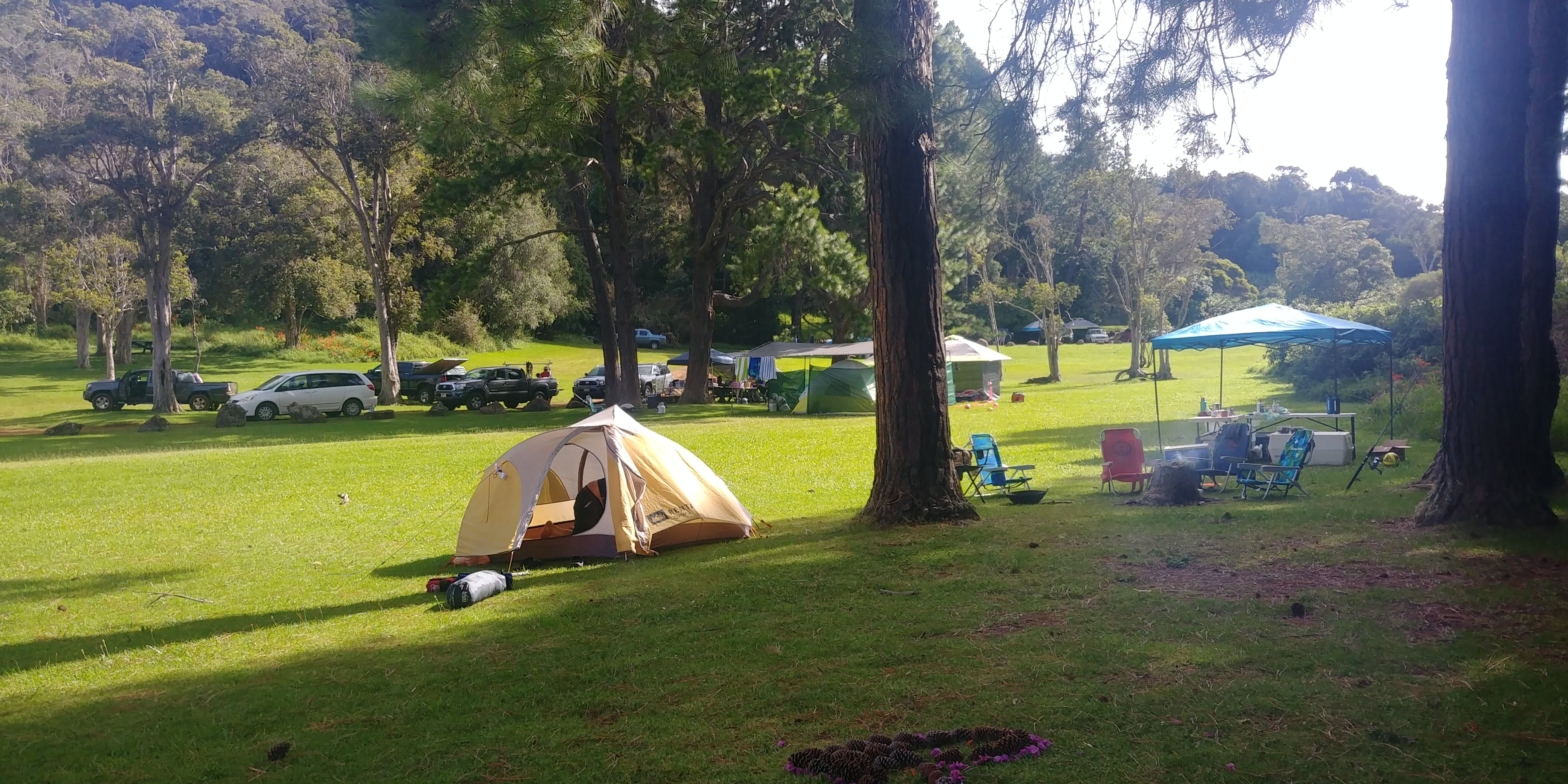Kokee Campground - Kokee State Park - Kauai, HI | The Dyrt on clifty falls state park trail map, waimea canyon state park map, anza-borrego state park trail map, na pali coast kauai trail map, na pali coast state park map, watoga state park trail map, lake norman state park trail map, cunningham falls state park trail map, cherry creek state park trail map, castle rock state park trail map, waimea canyon trail map, high point state park trail map, shawnee state forest backpack trail map, hanalei trail map, brown county state park trail map, canaan valley state park trail map, nockamixon state park trail map, oak mountain state park trail map, iao valley state park trail map, kalalau trail trail map,