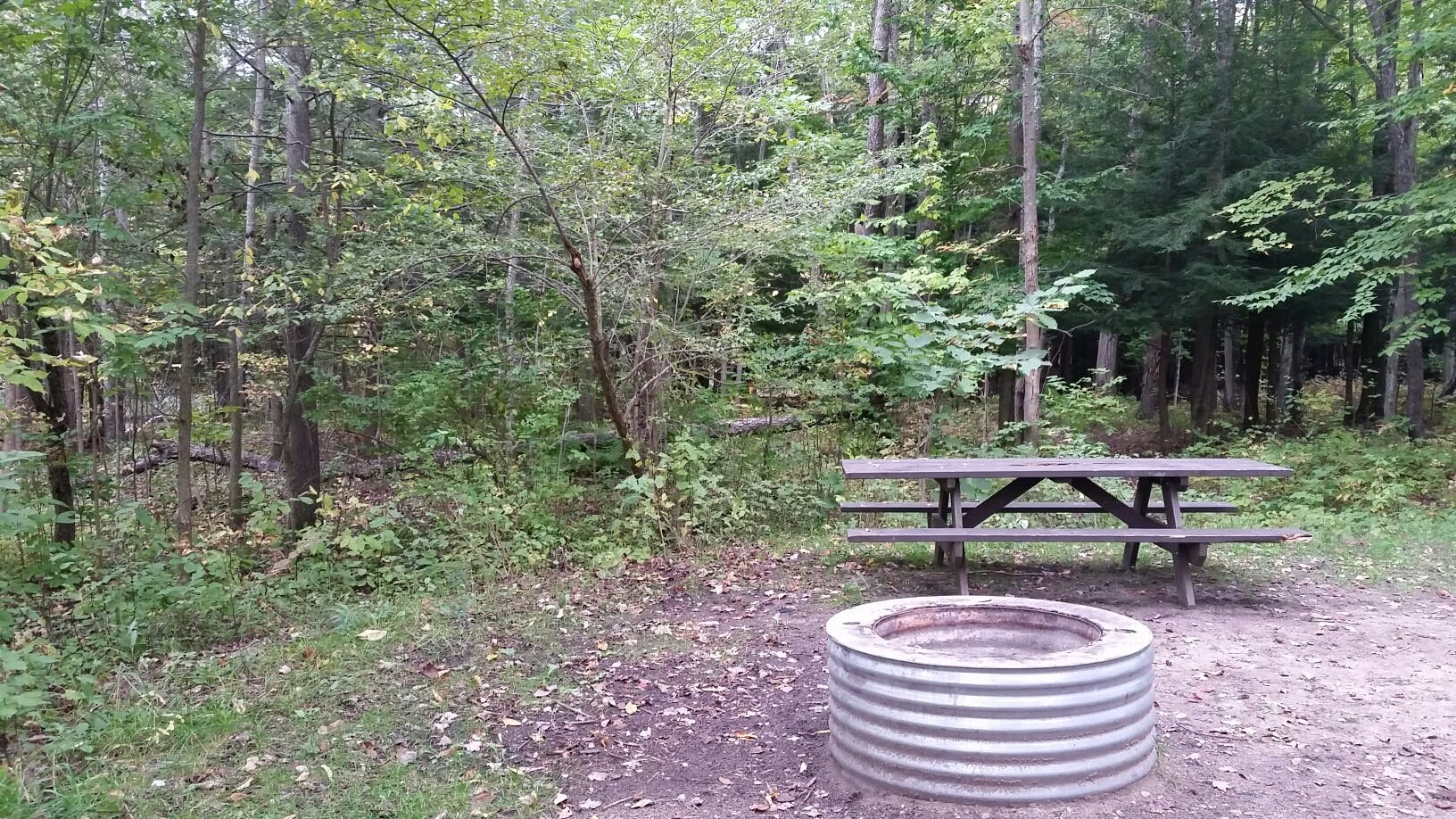 Lake Ann - State Forest, MI | The Dyrt