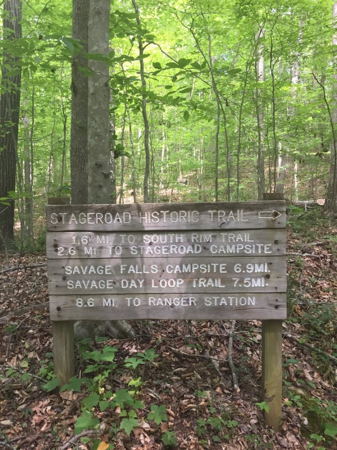 Savage Falls Camping Area, TN | The Dyrt on tennessee state parks map, savage gulf hiking trails map, alabama gulf shores state park map, gulf state park backcountry trail map, gulf state park camping map, rock island state park map,