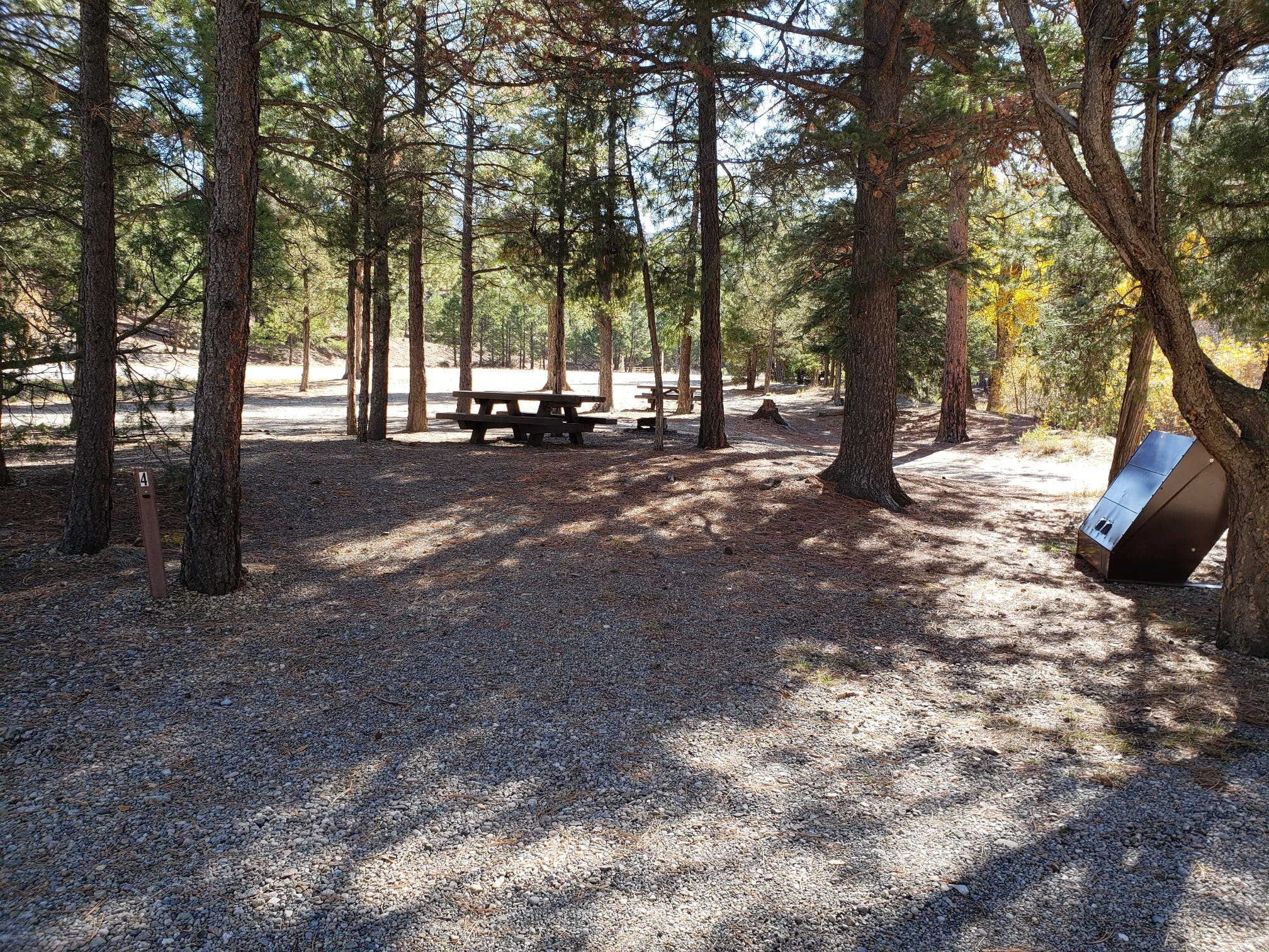 Goat Hill Campground Nm The Dyrt
