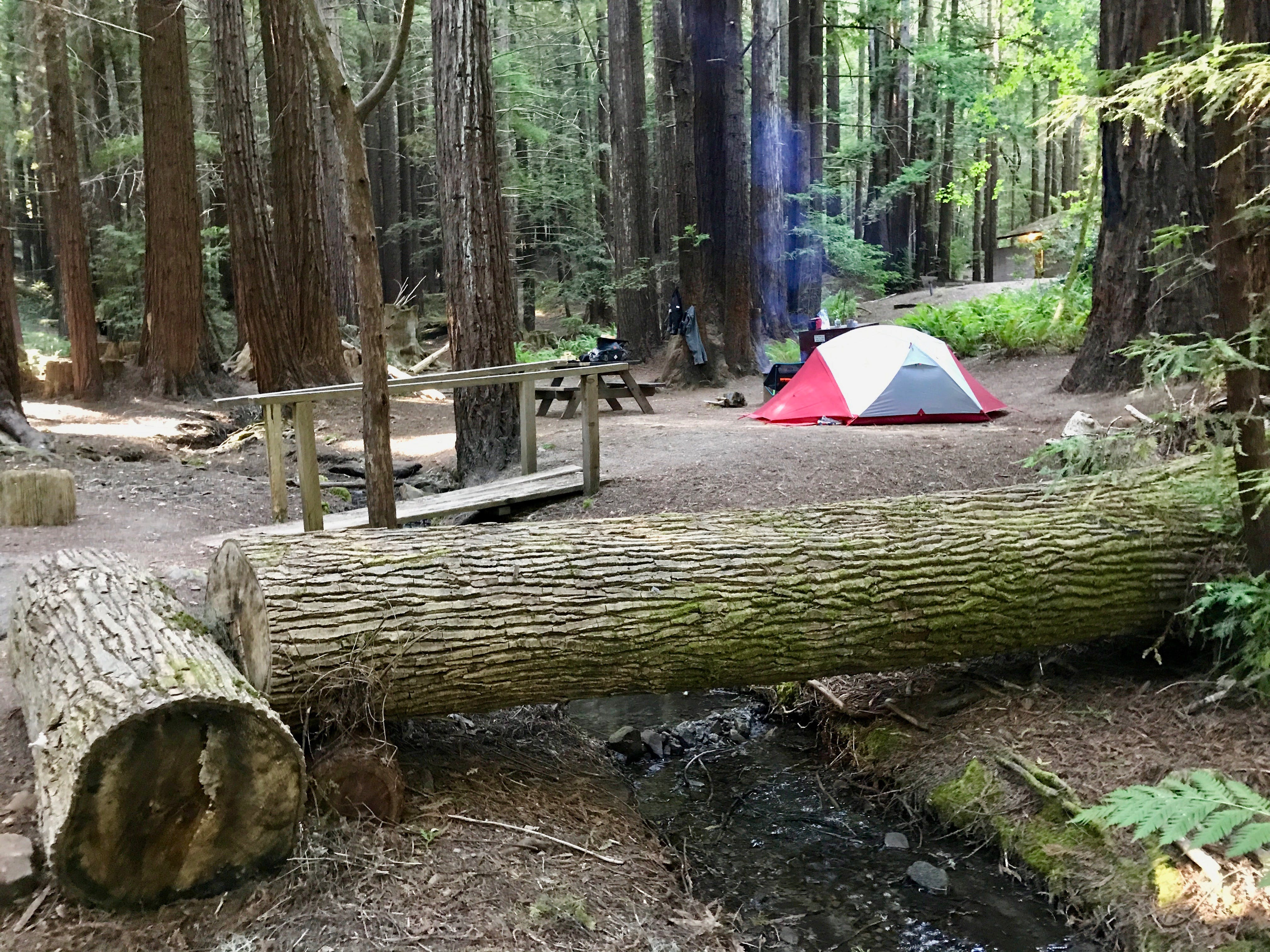Hidden Springs Humbolt Redwoods State Park Ca The Dyrt