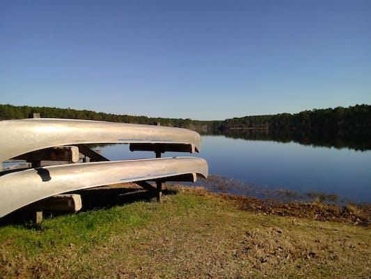 Bear Lake Campground, FL | The Dyrt