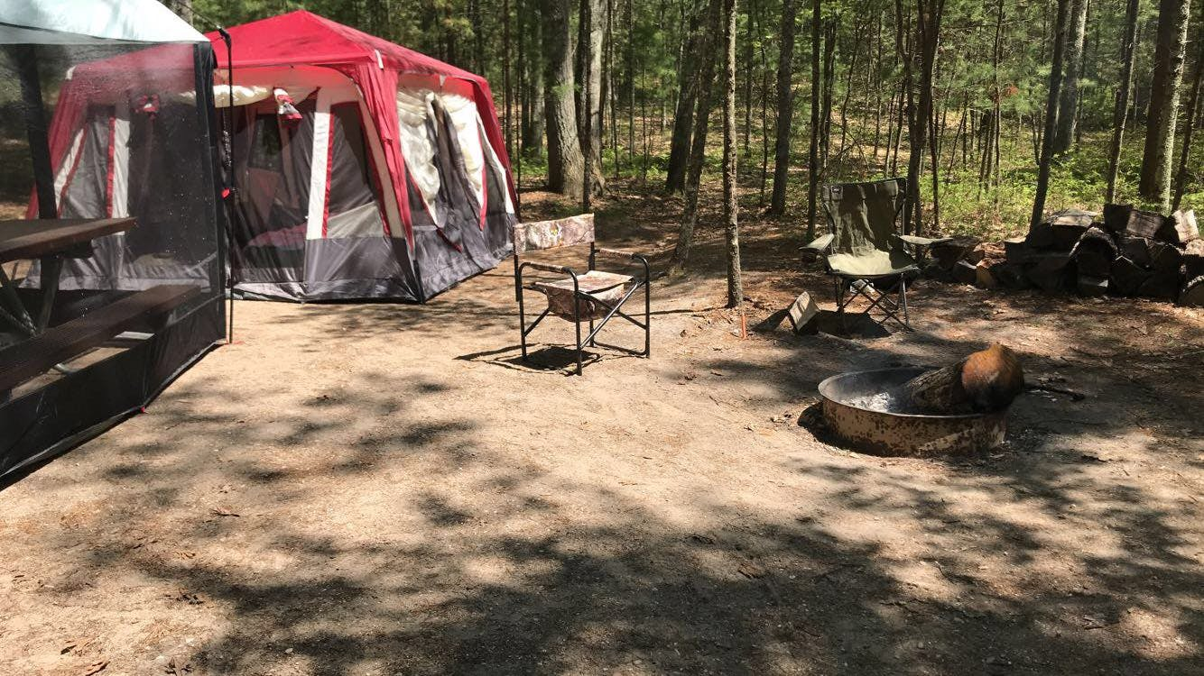 Platte River State Forest Campground, MI | The Dyrt