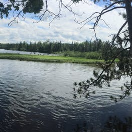 Ausable River Camping, MI   The Dyrt