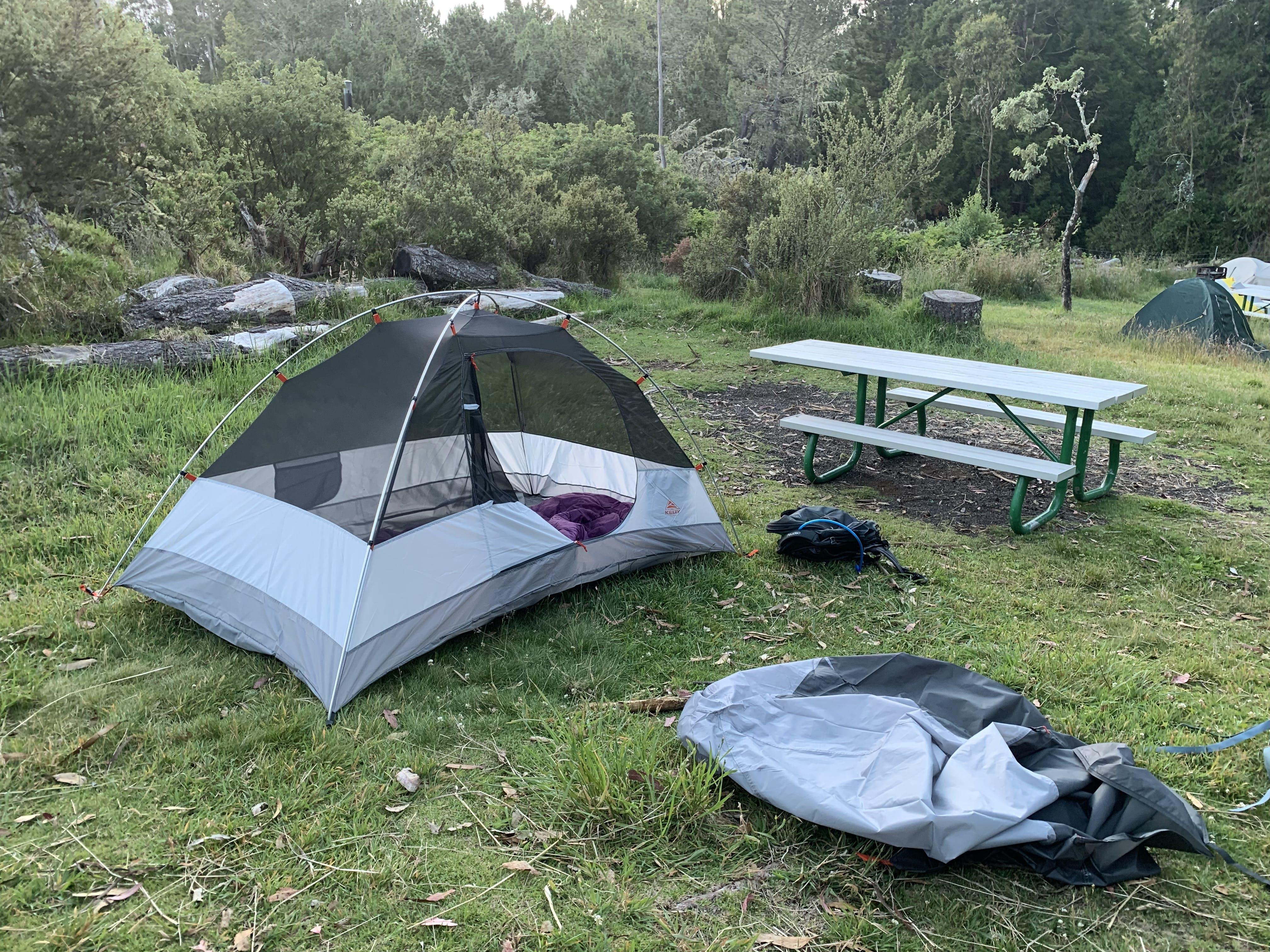 Hosmer Grove - Haleakala National Park, HI | The Dyrt