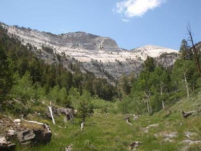 Grey Cliffs Campground, NV   The Dyrt