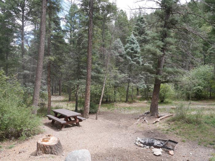 Columbine Campground Nm Nm The Dyrt