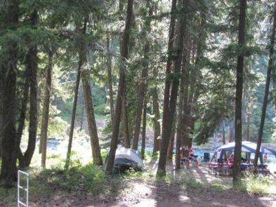 Sawmill Flat Campground, WA | The Dyrt