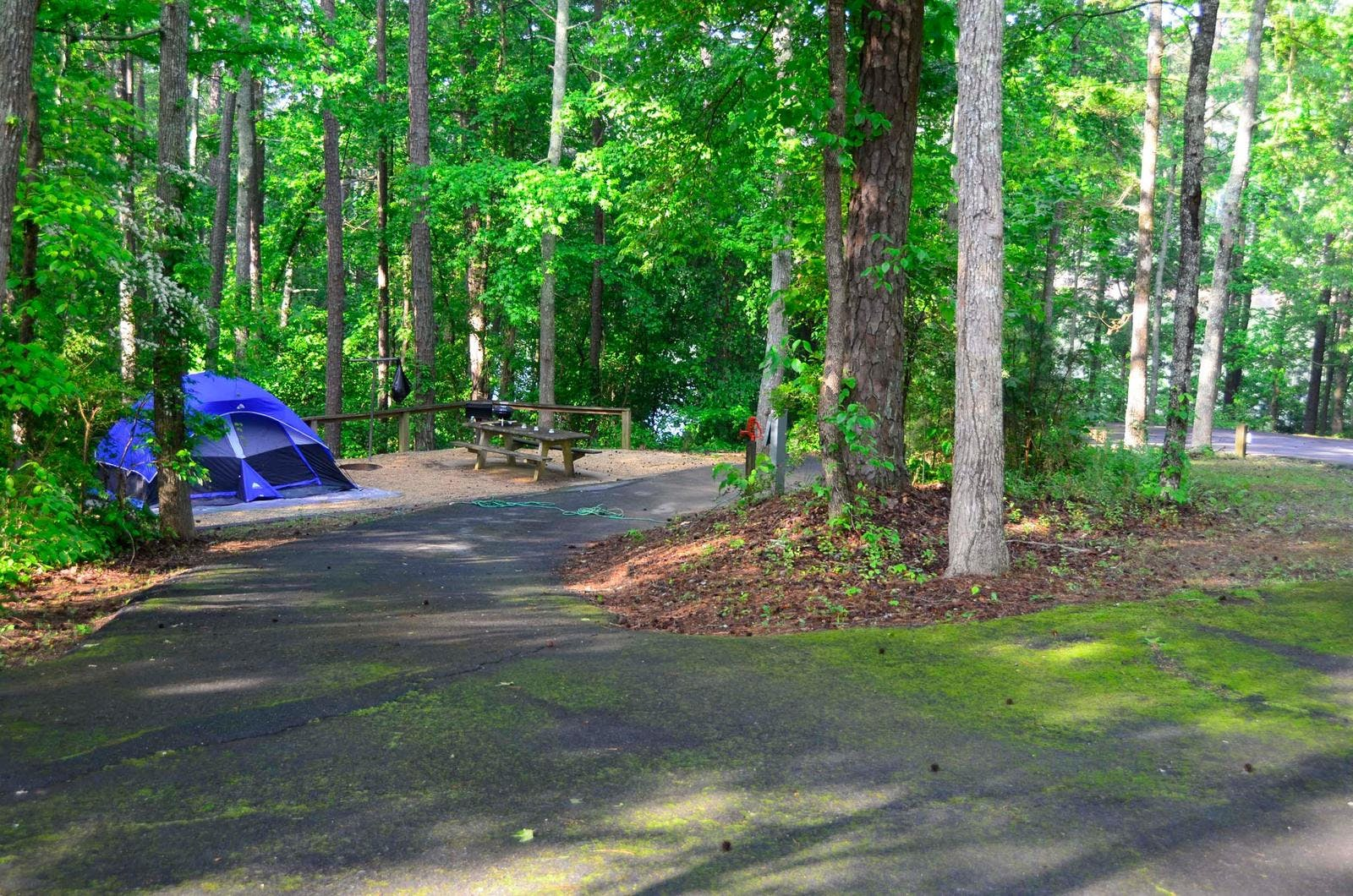 Sweetwater Campground, GA | The Dyrt