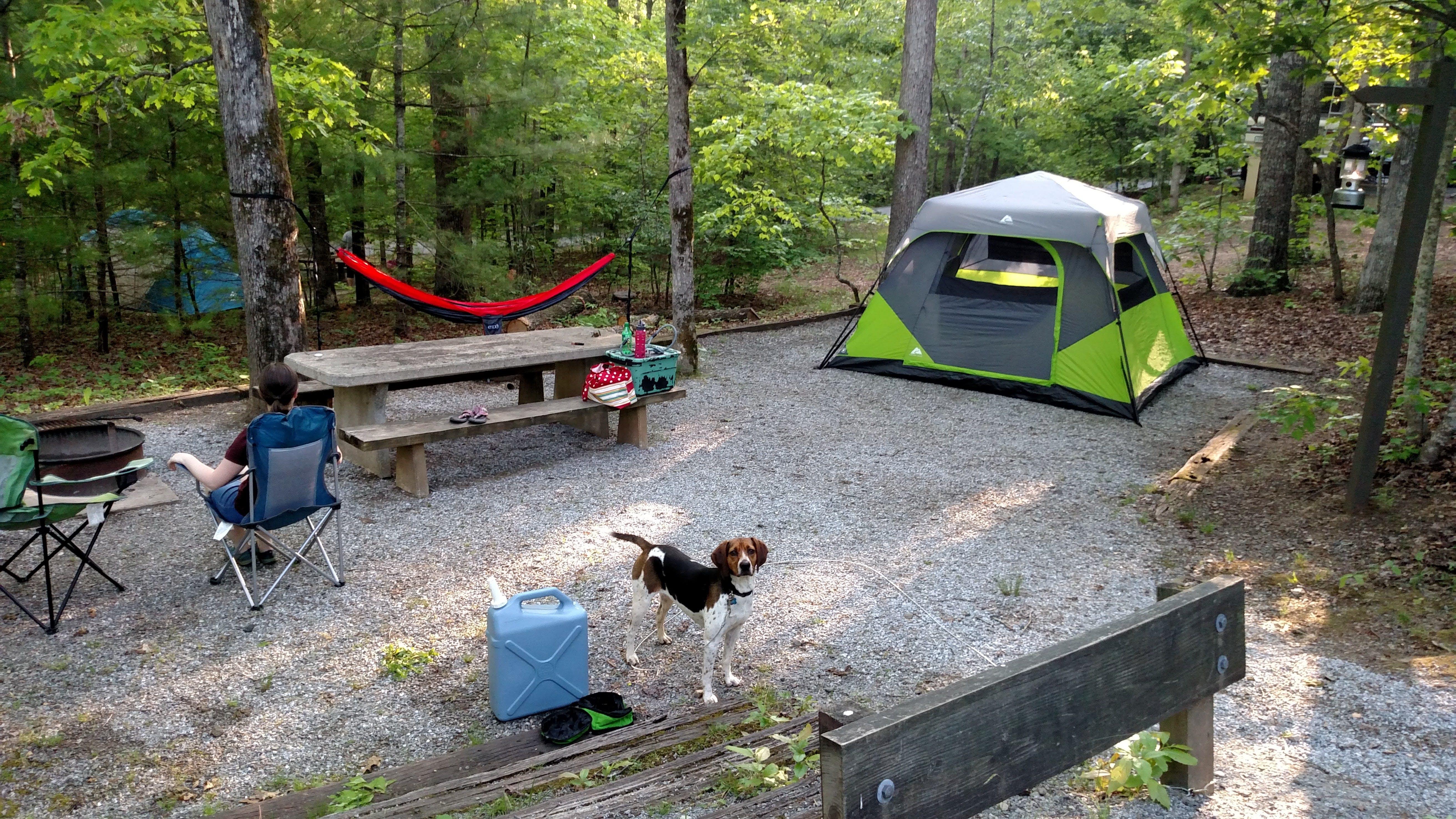 Lake Powhatan Campground, NC | The Dyrt