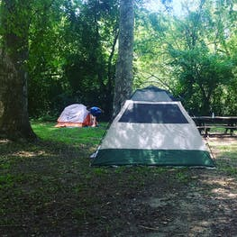 The Best Camping in Tennessee | 100+ TN Campgrounds | The Dyrt