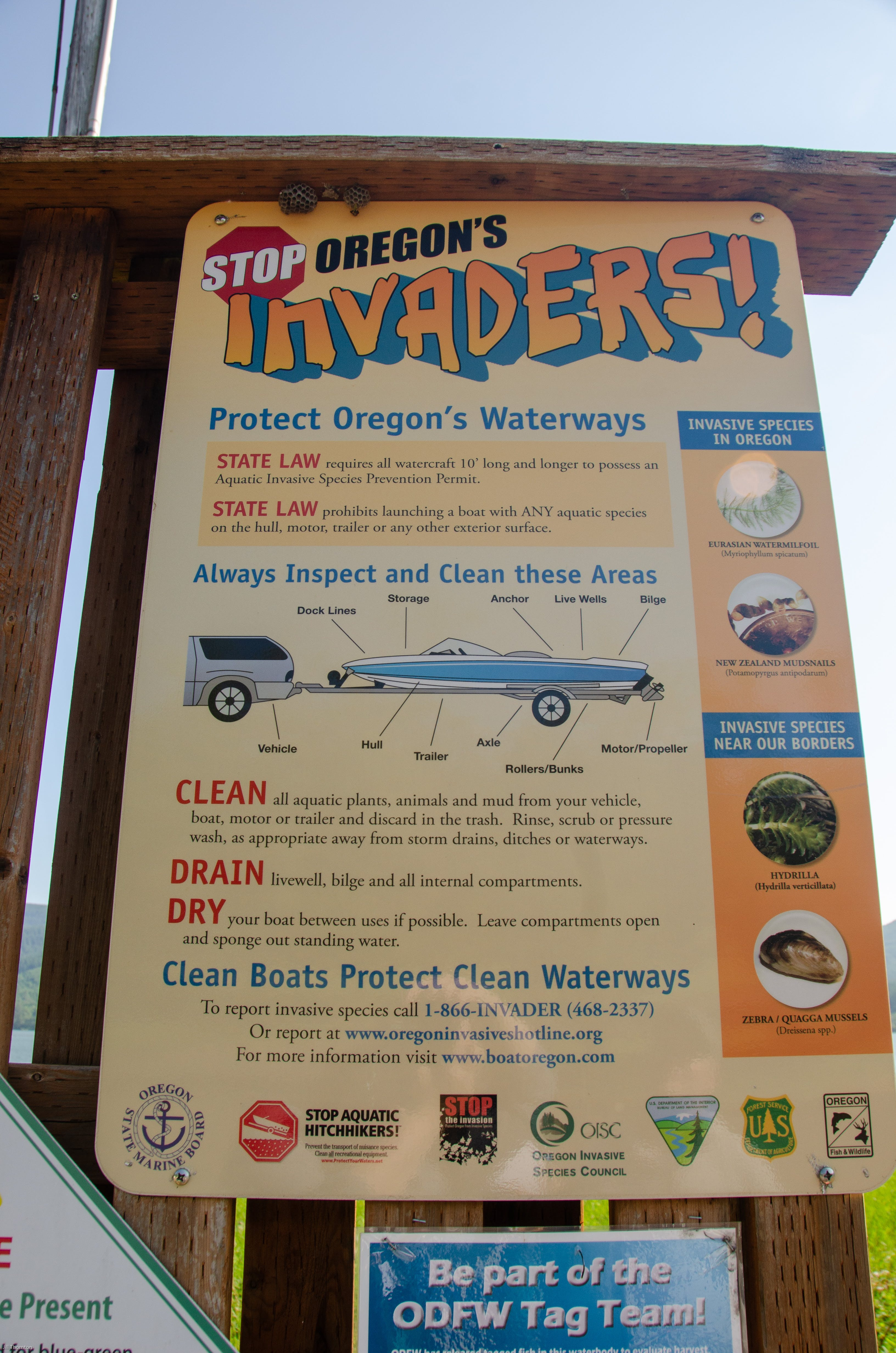Baker Bay Campgrounds & Marina, OR | Jill T  reviews Baker