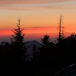 Mount Mitchell State Park, NC | The Dyrt