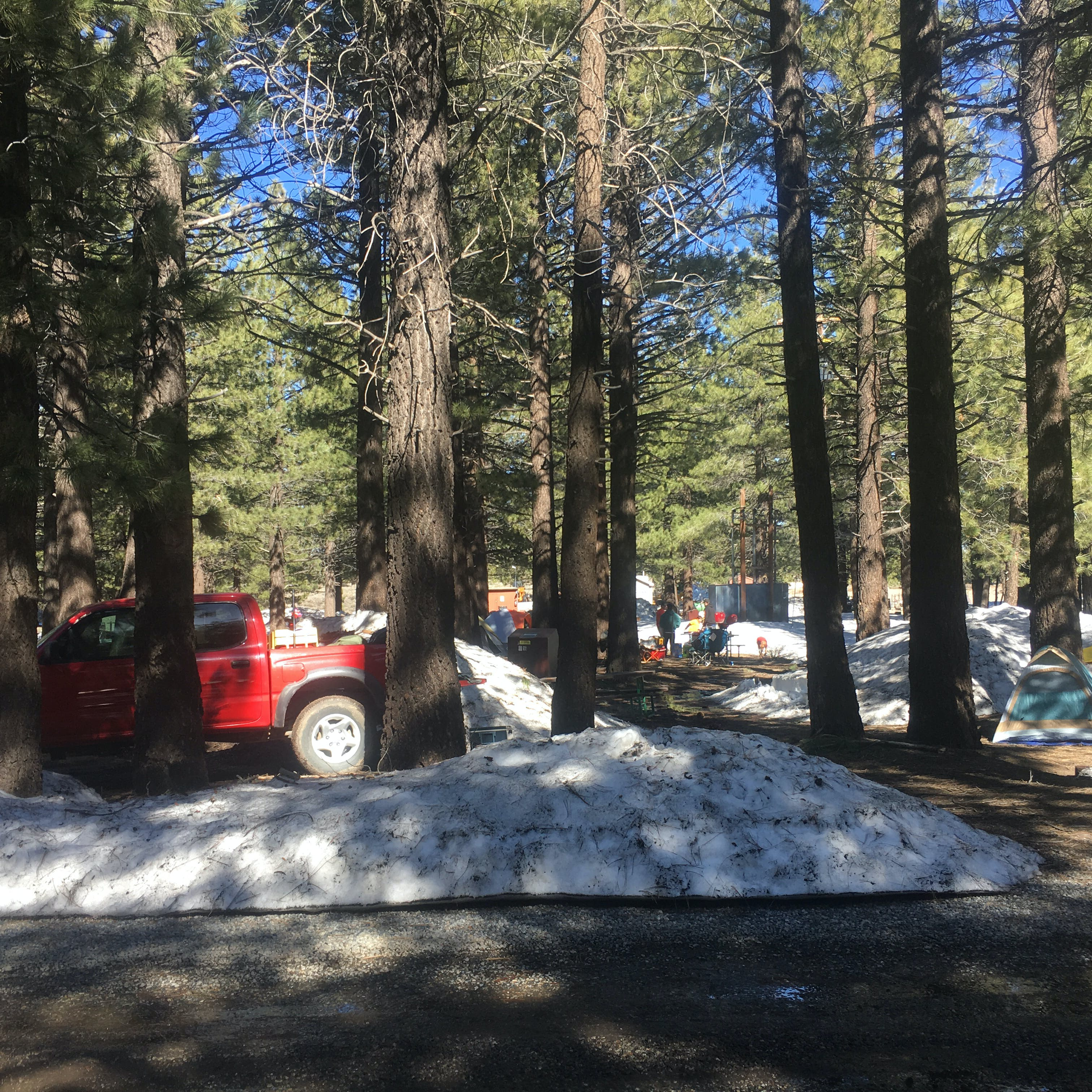 Mammoth Mountain RV Park & Campground, CA   The Dyrt