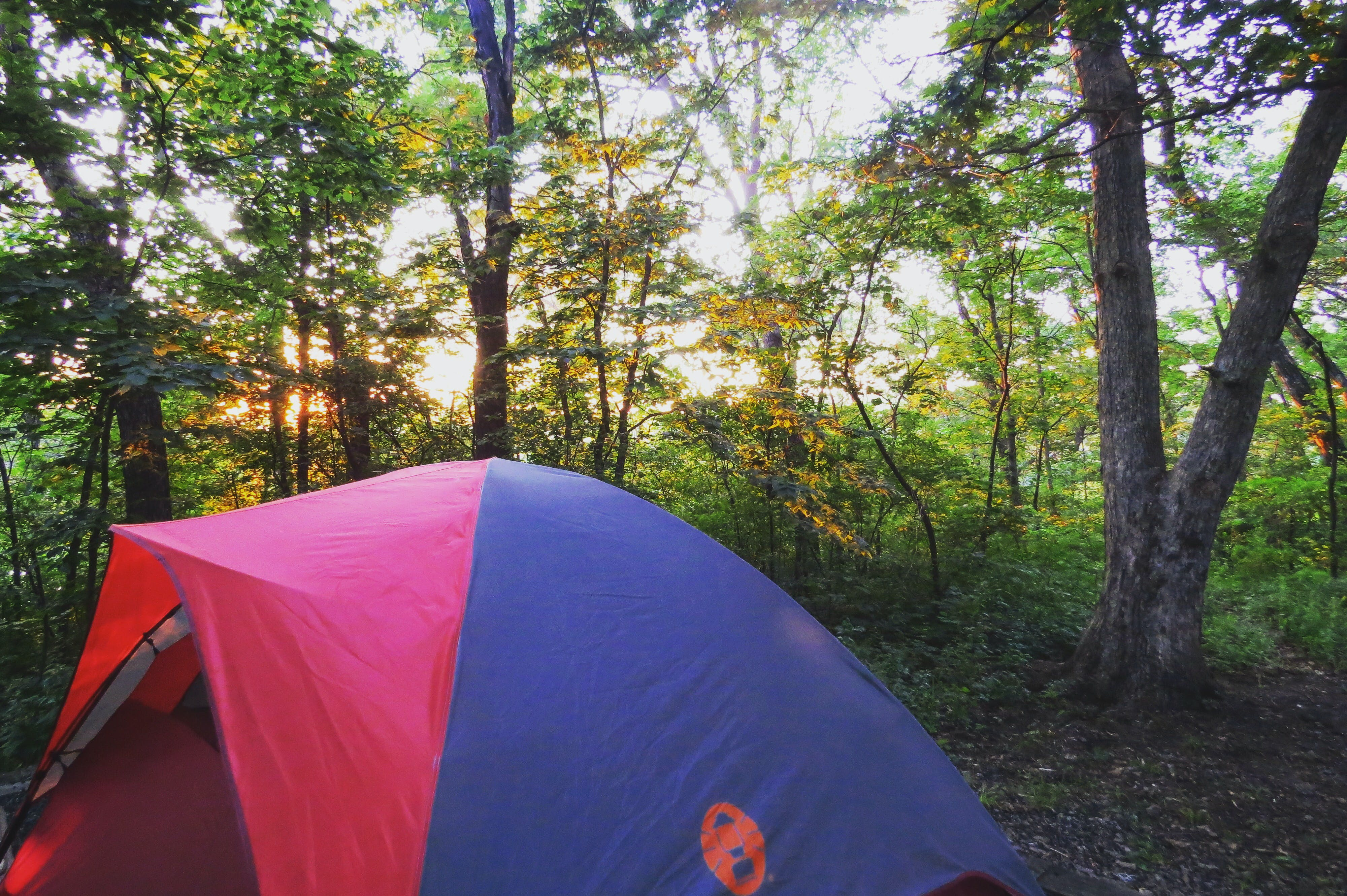 & Wallace State Park MO | The Dyrt