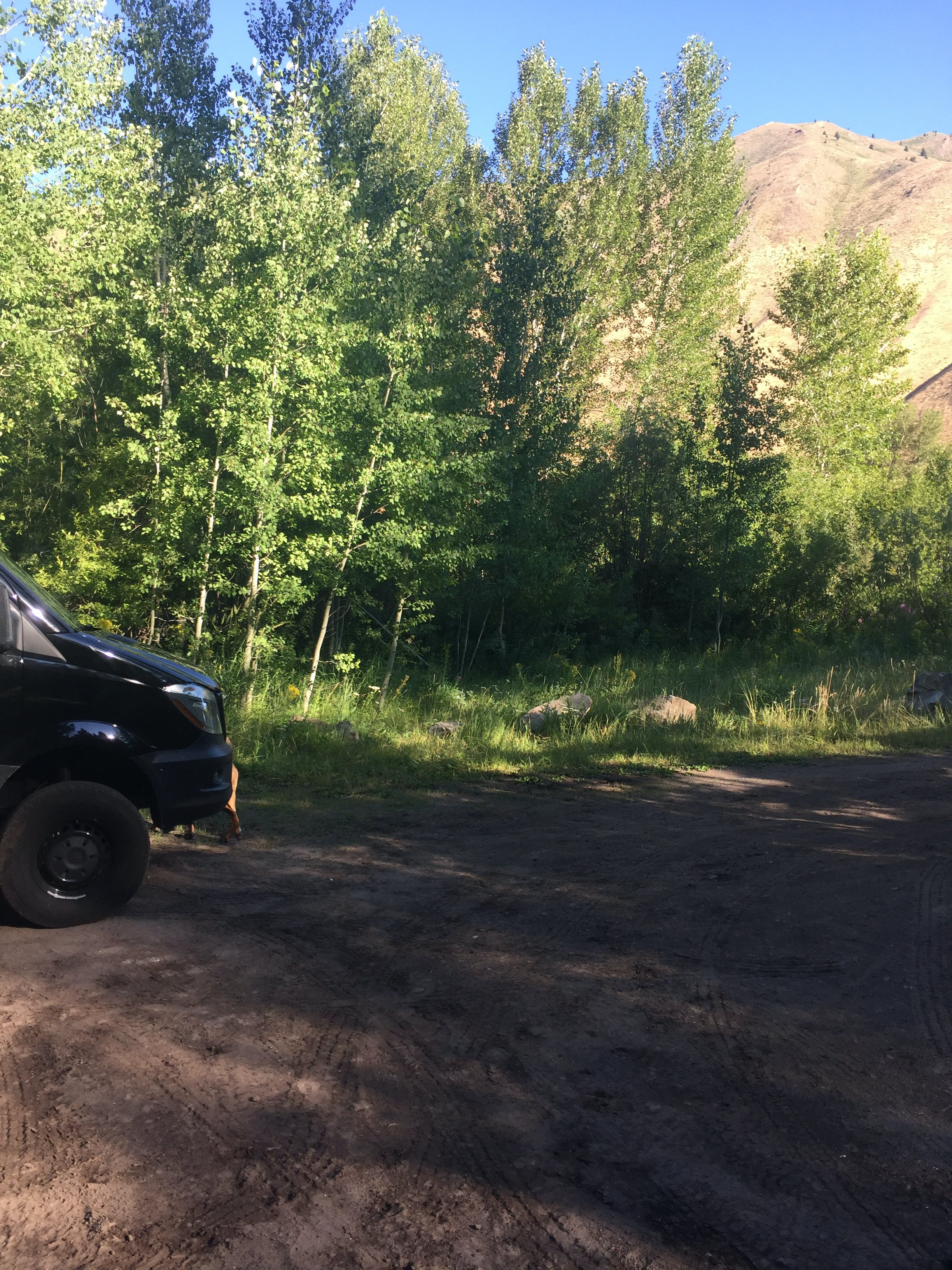 Warm Springs Campground, ID | The Dyrt