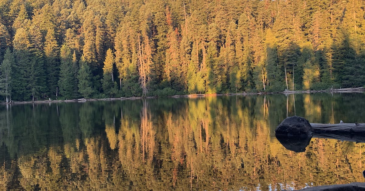Black Lake Campground, OR | The Dyrt