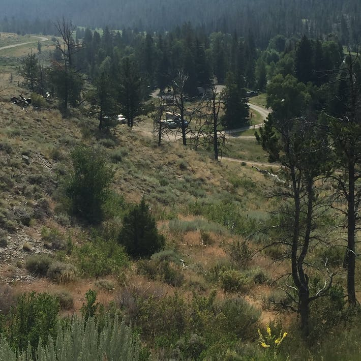 Wood River Campground, WY | The Dyrt