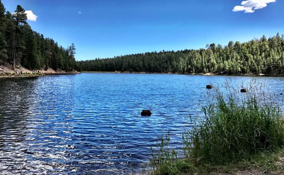 Bear Canyon Campground, AZ | The Dyrt