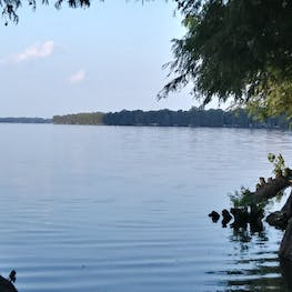 Reelfoot Lake State Park, TN   The Dyrt