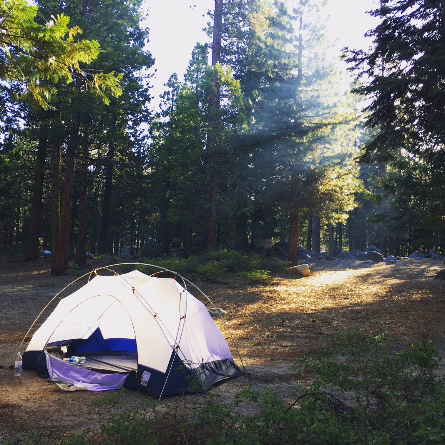 Pinecrest lake campgrounds hookups