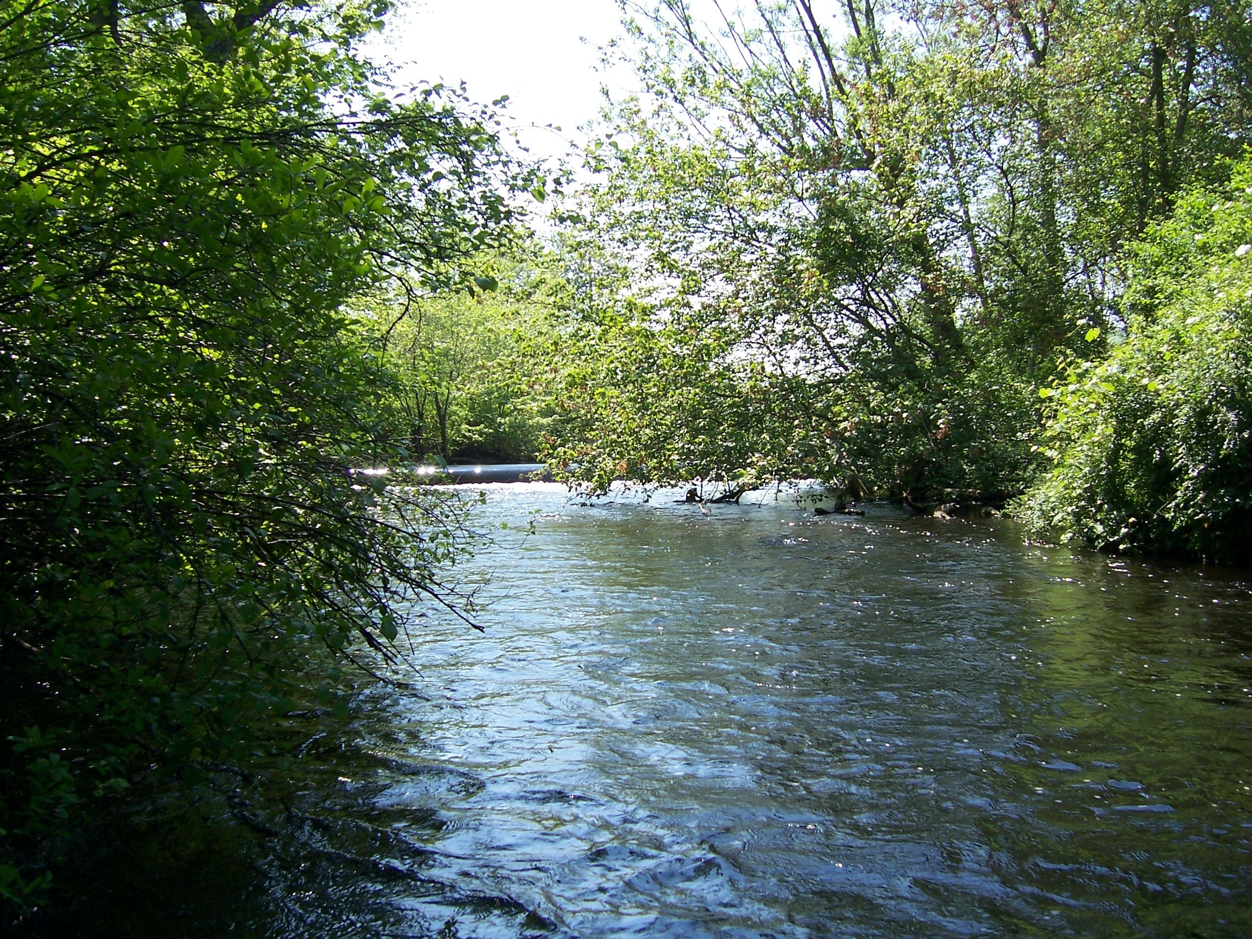 Wildwood State Park, NY   The Dyrt on knox farm state park map, peebles island state park map, belleplain state park map, hither hills state park map, wingfoot state park map, suwannee state park map, webster state park map, nj state park campgrounds map, mine kill state park map, letchworth state park map, cape may point state park map, long branch state park map, arrow rock state park map, fairview state park map, valley of fire state park campground map, indian creek state park map, ocala state park map, dunes state park map, yellow banks state park map, orient beach state park map,