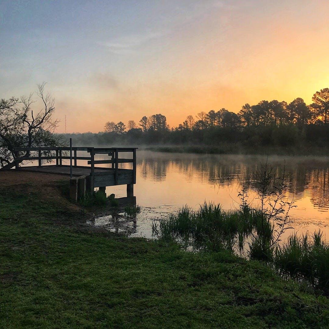 South Shore Park - Lake Bastrop, TX | The Dyrt