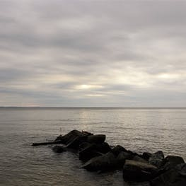Bayside - Assateague National Seashore, MD | The Dyrt