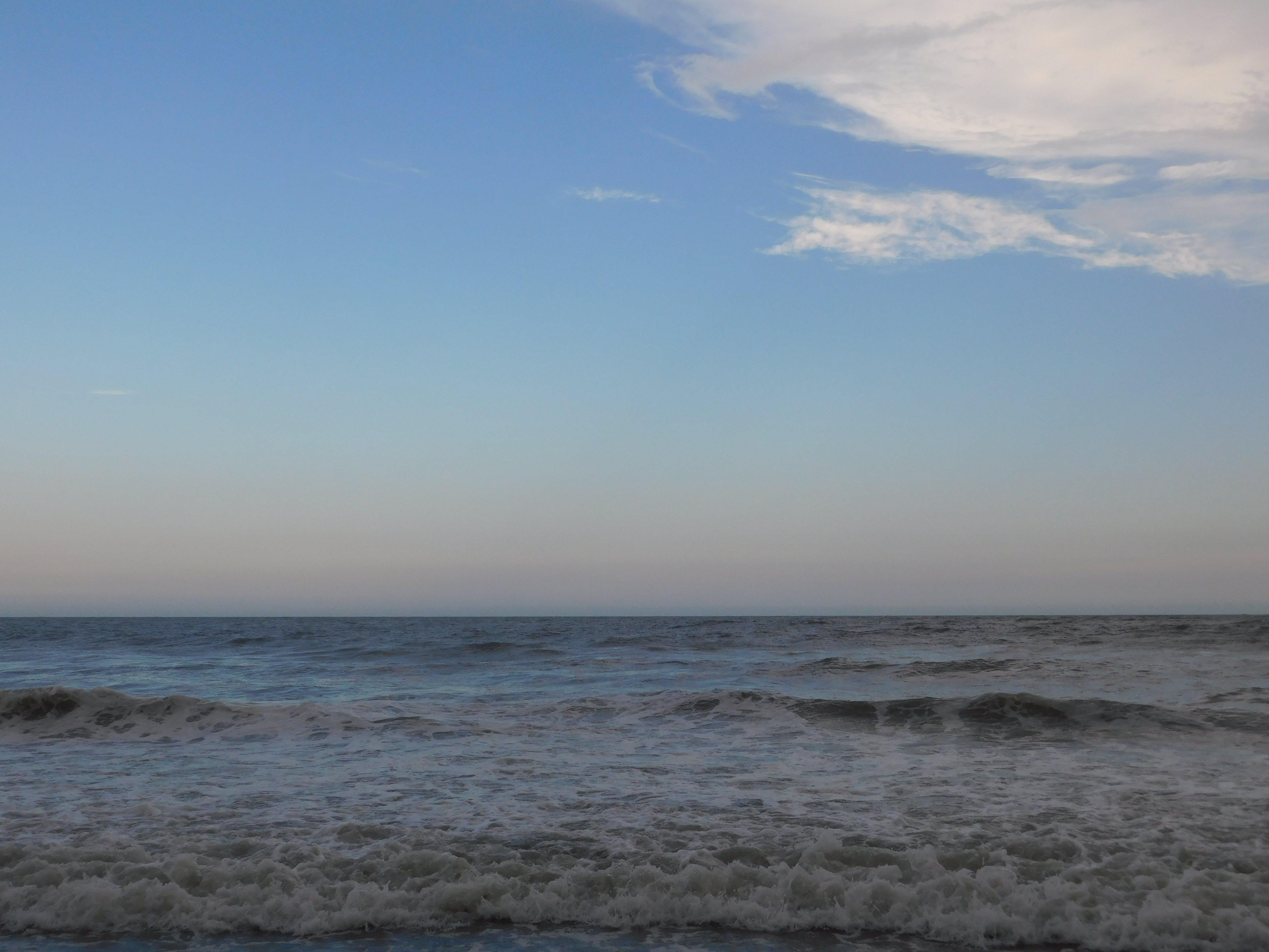 Myrtle Beach State Park, SC | The Dyrt