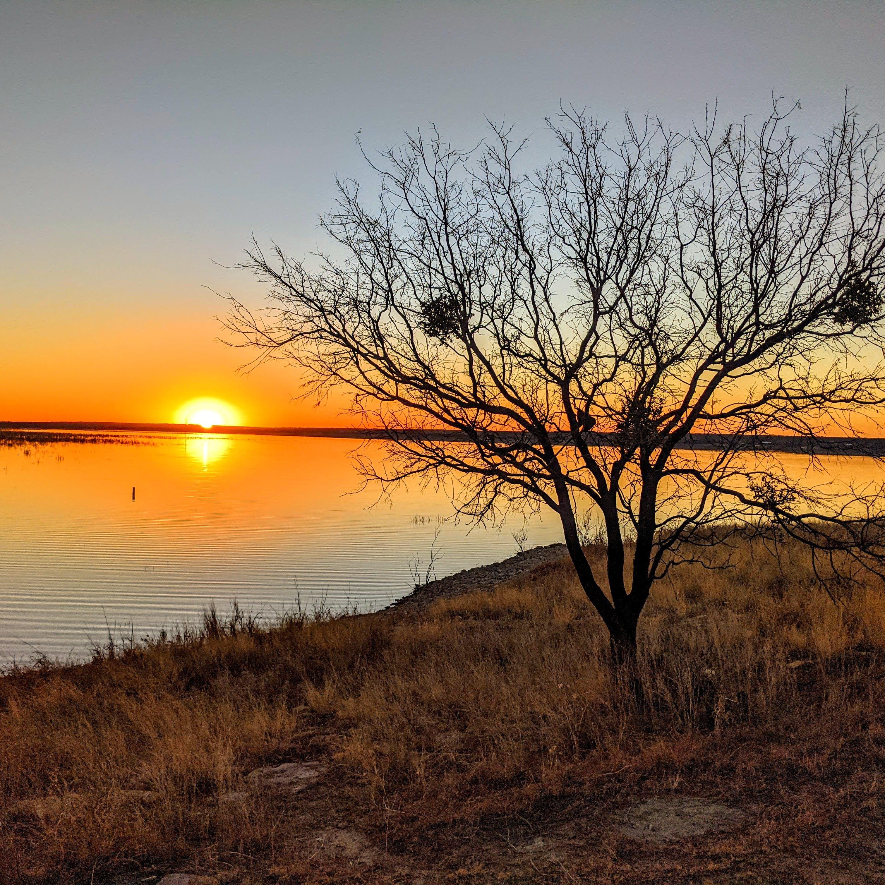 Concho Park - O.H. Ivie Reservoir, TX | The Dyrt