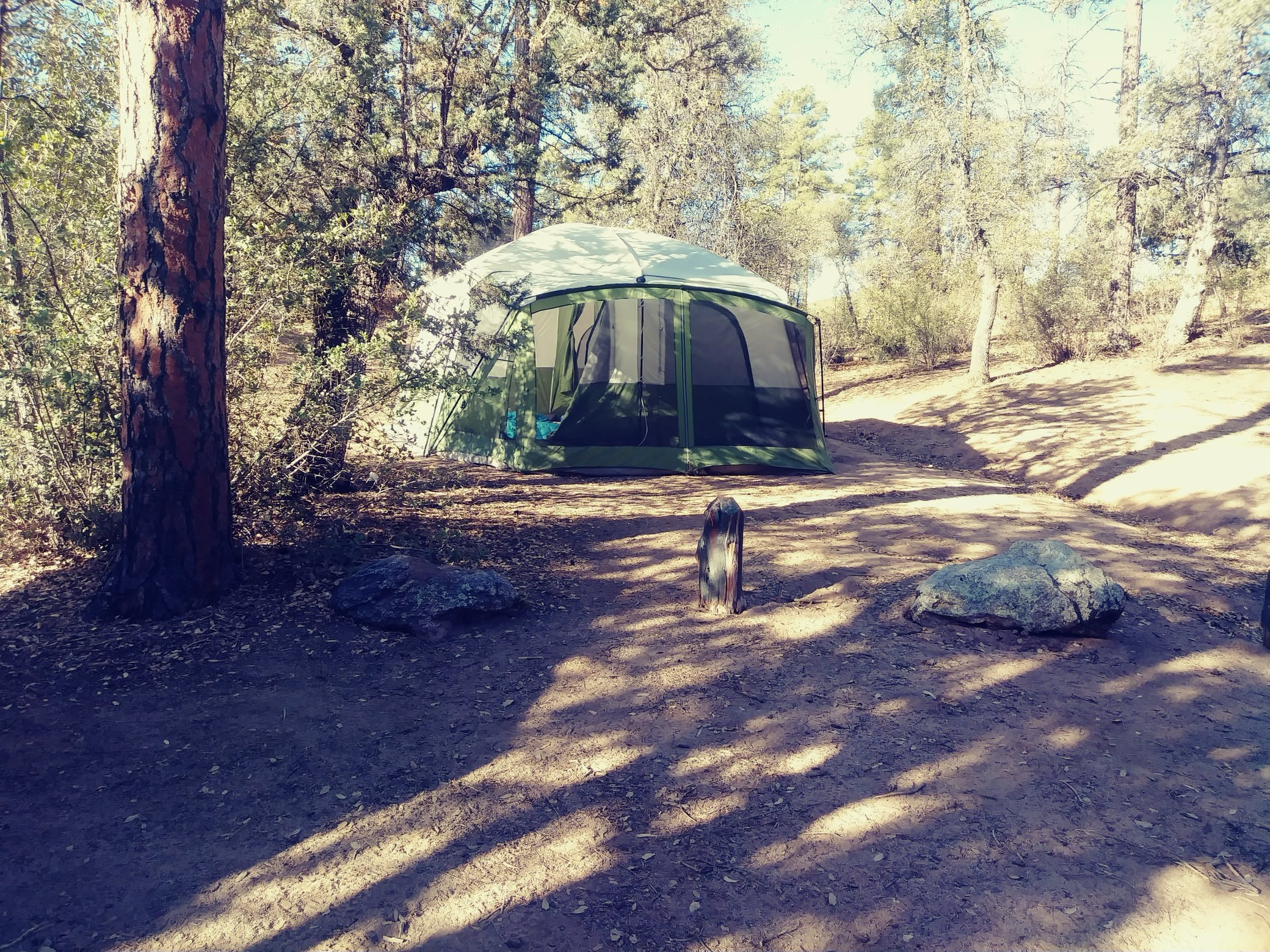 Powell Springs Campground   The Dyrt