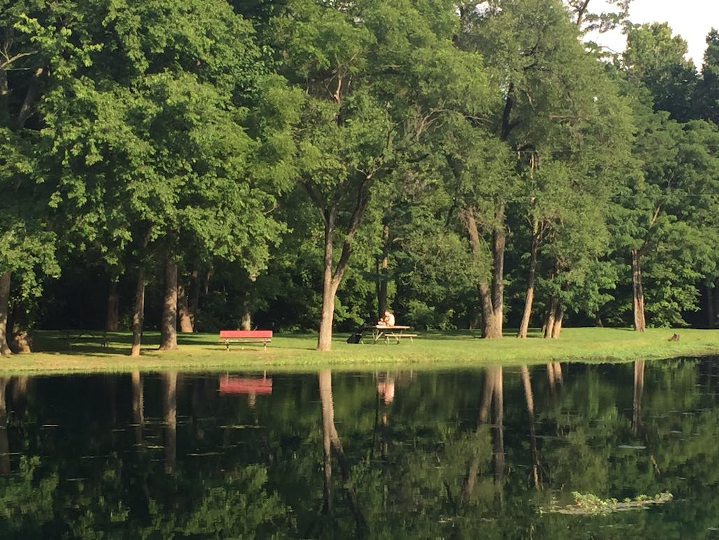 image taken across a pond from a man on a solo picnic