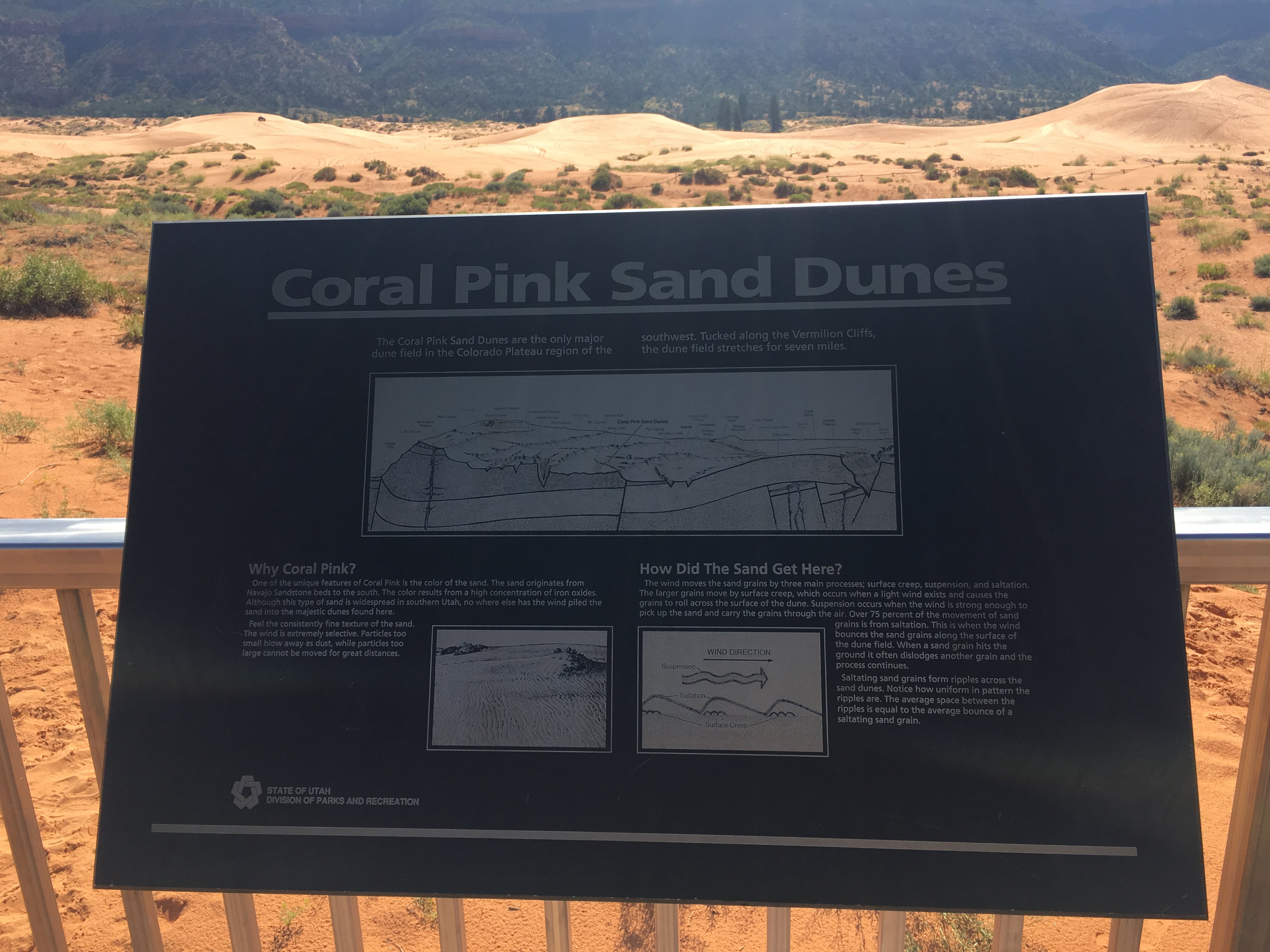 Spring Comes To Dunes >> Coral Pink Sand Dunes State Park Ut The Dyrt