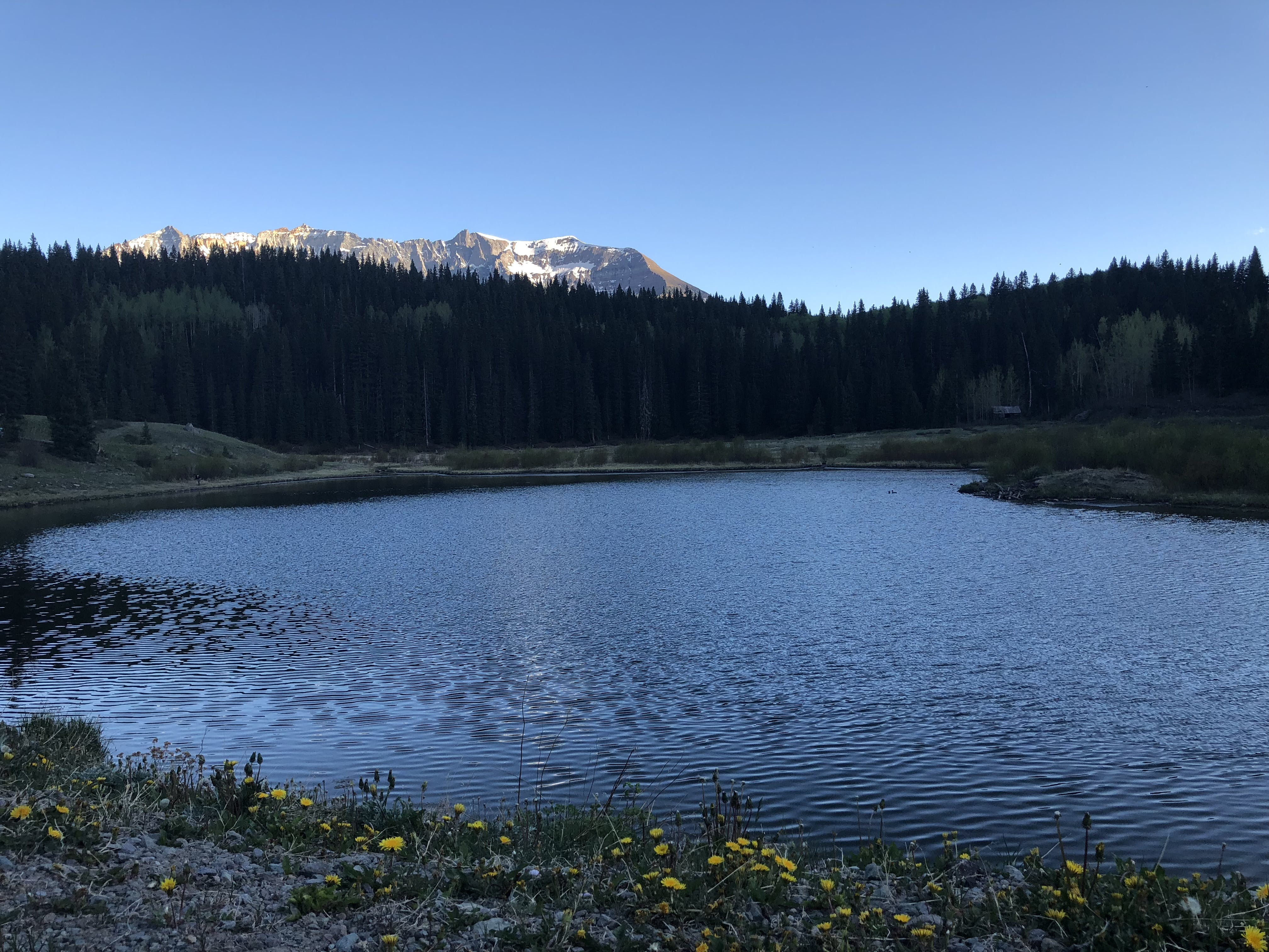 Priest Lake Dispersed Camping Area - Norwood Rd, CO | The Dyrt