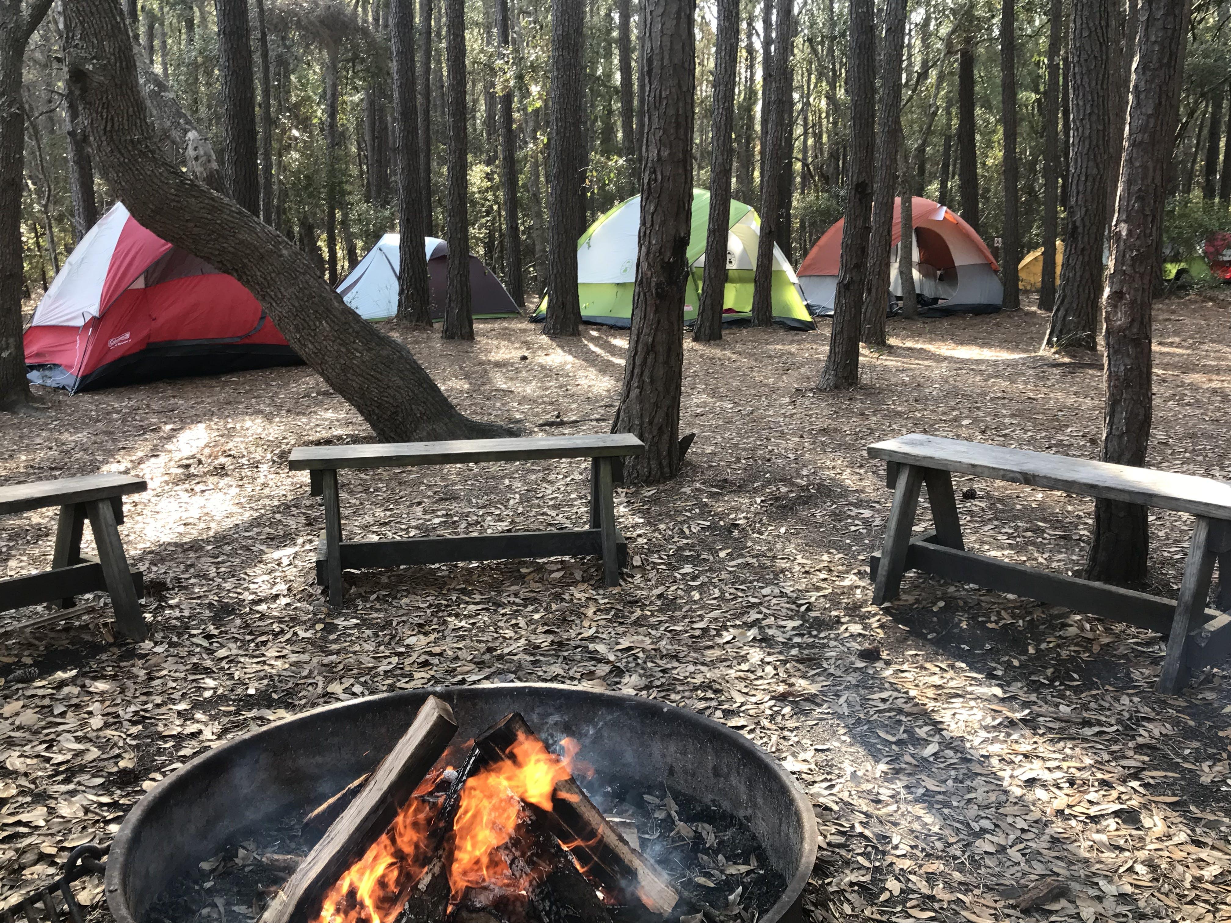 Huntington Beach State Park Campground, SC | The Dyrt