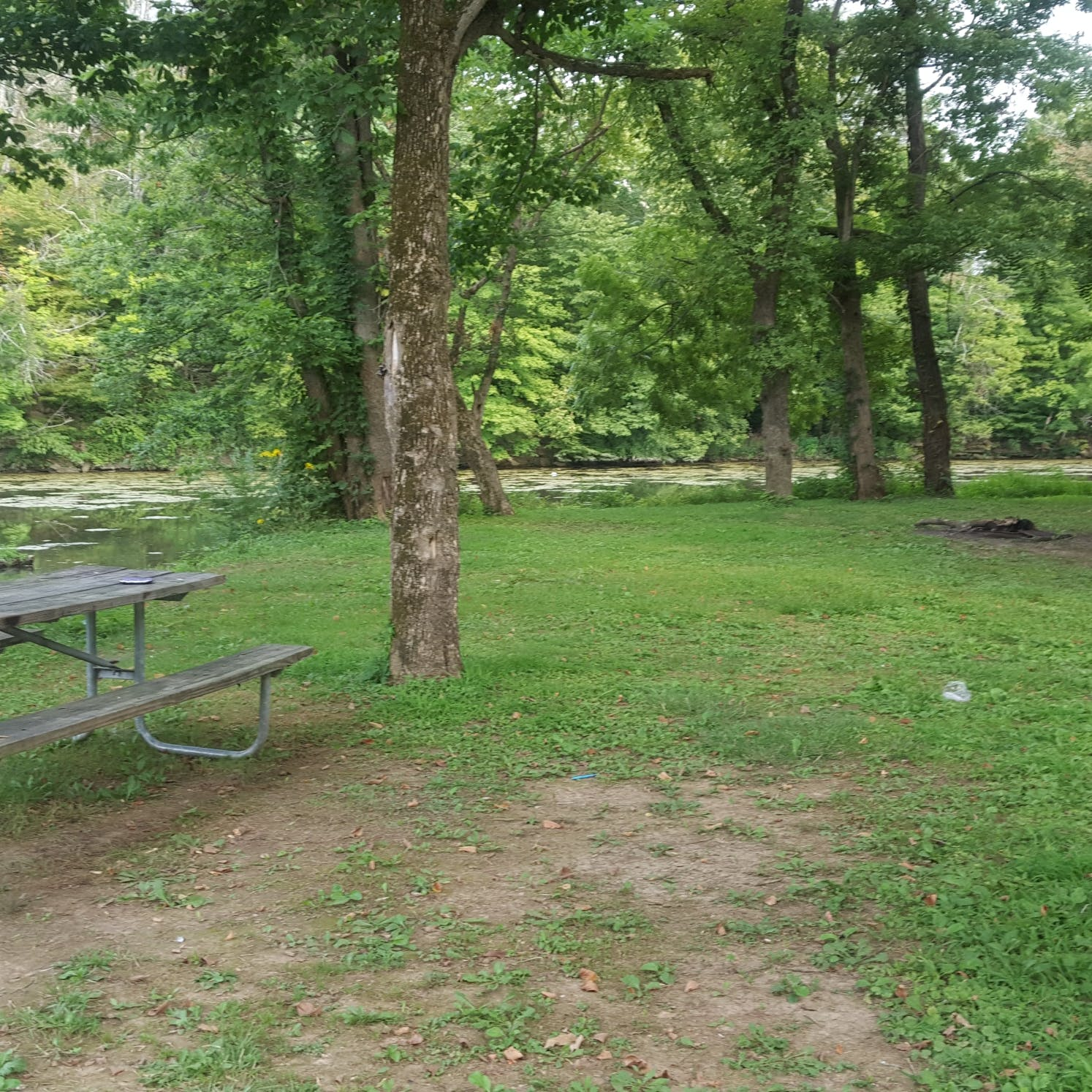 Lake Shelby Campground, KY | The Dyrt