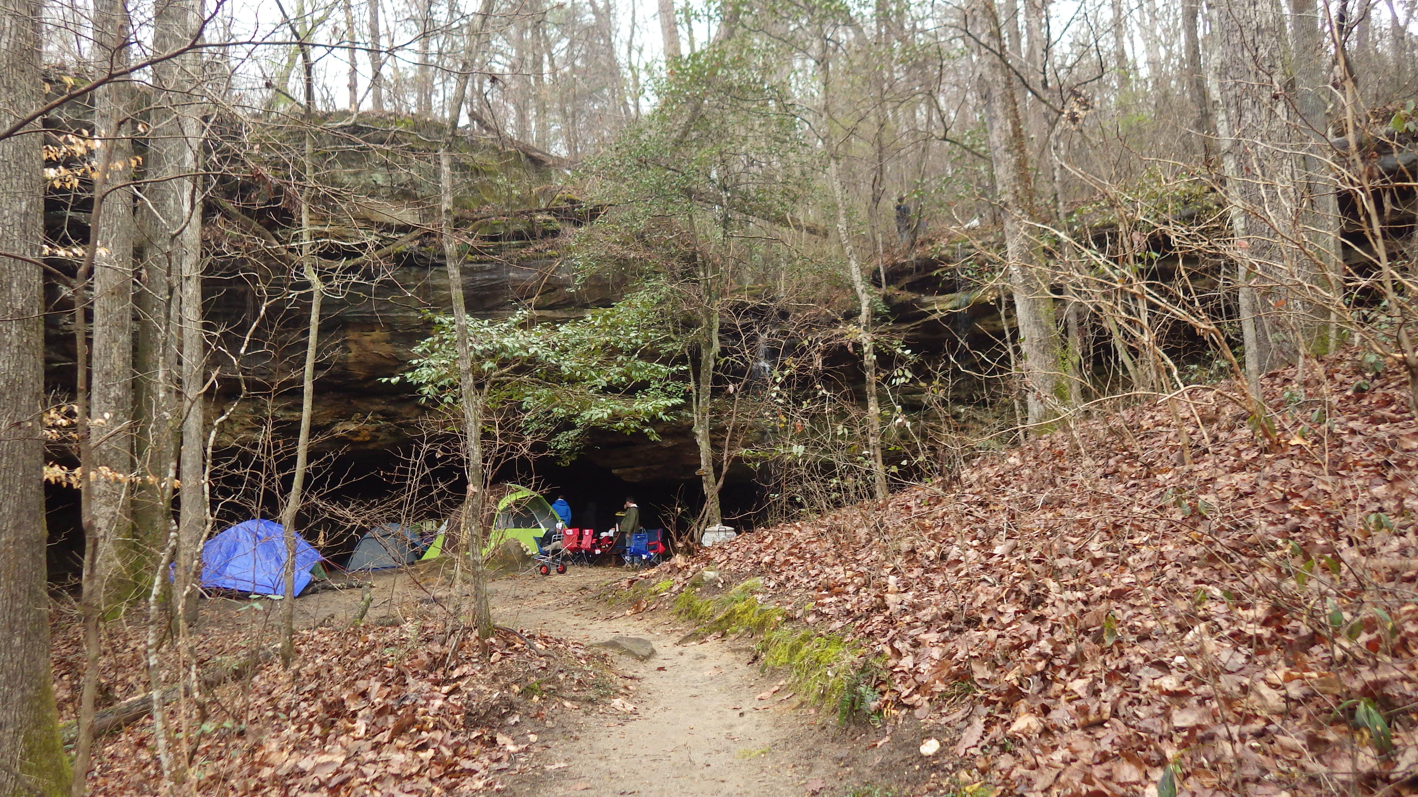Dismals Canyon Cabins and Primitive Campsites, AL | The Dyrt