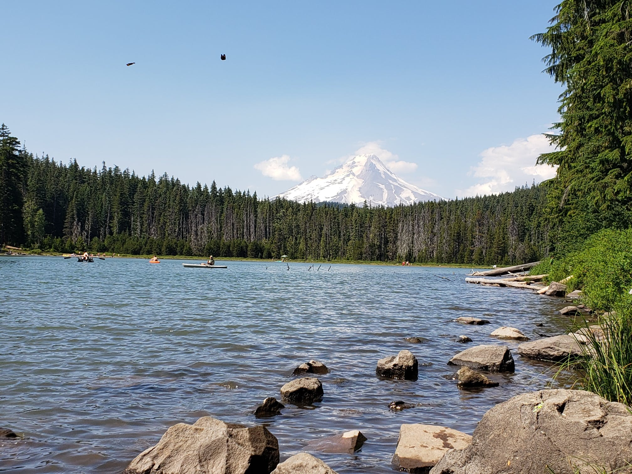 Frog Lake, OR | The Dyrt