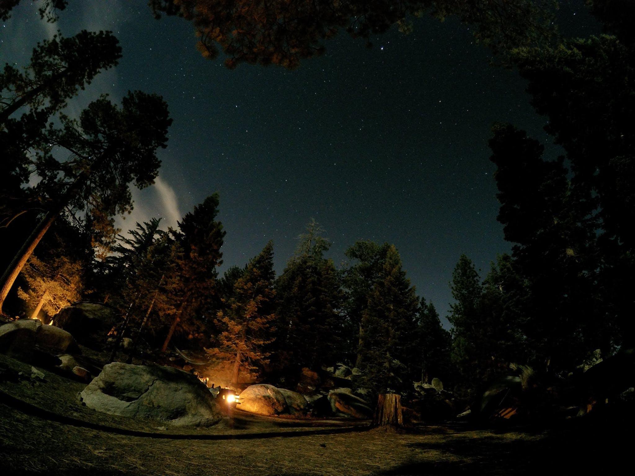 Boulder Basin, CA | The Dyrt