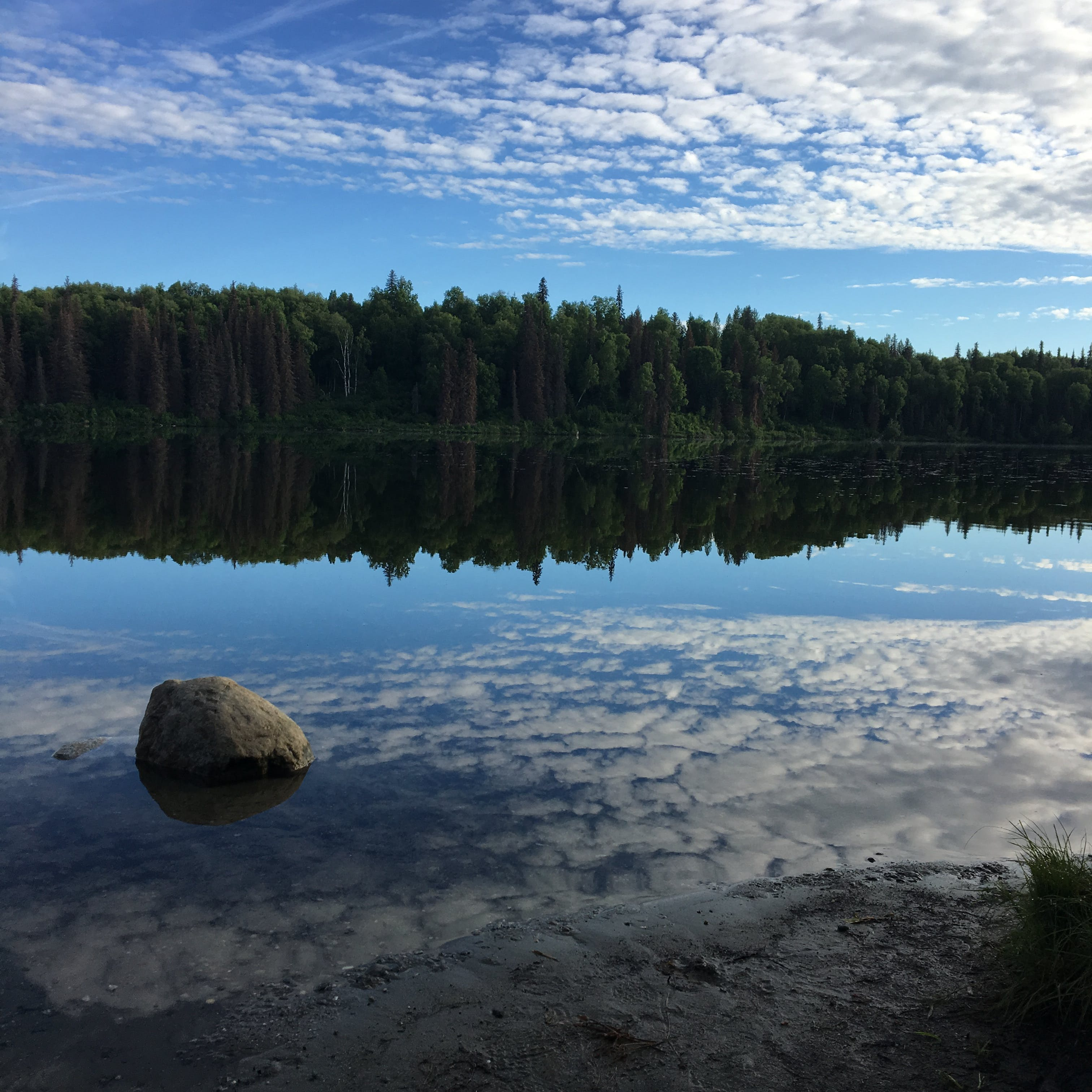 South Rolly Lake Campground, AK | The Dyrt