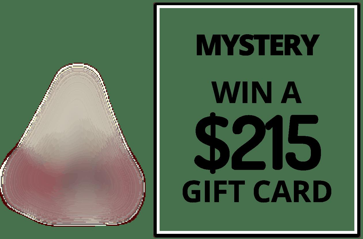 The Dyrt Mystery Prize