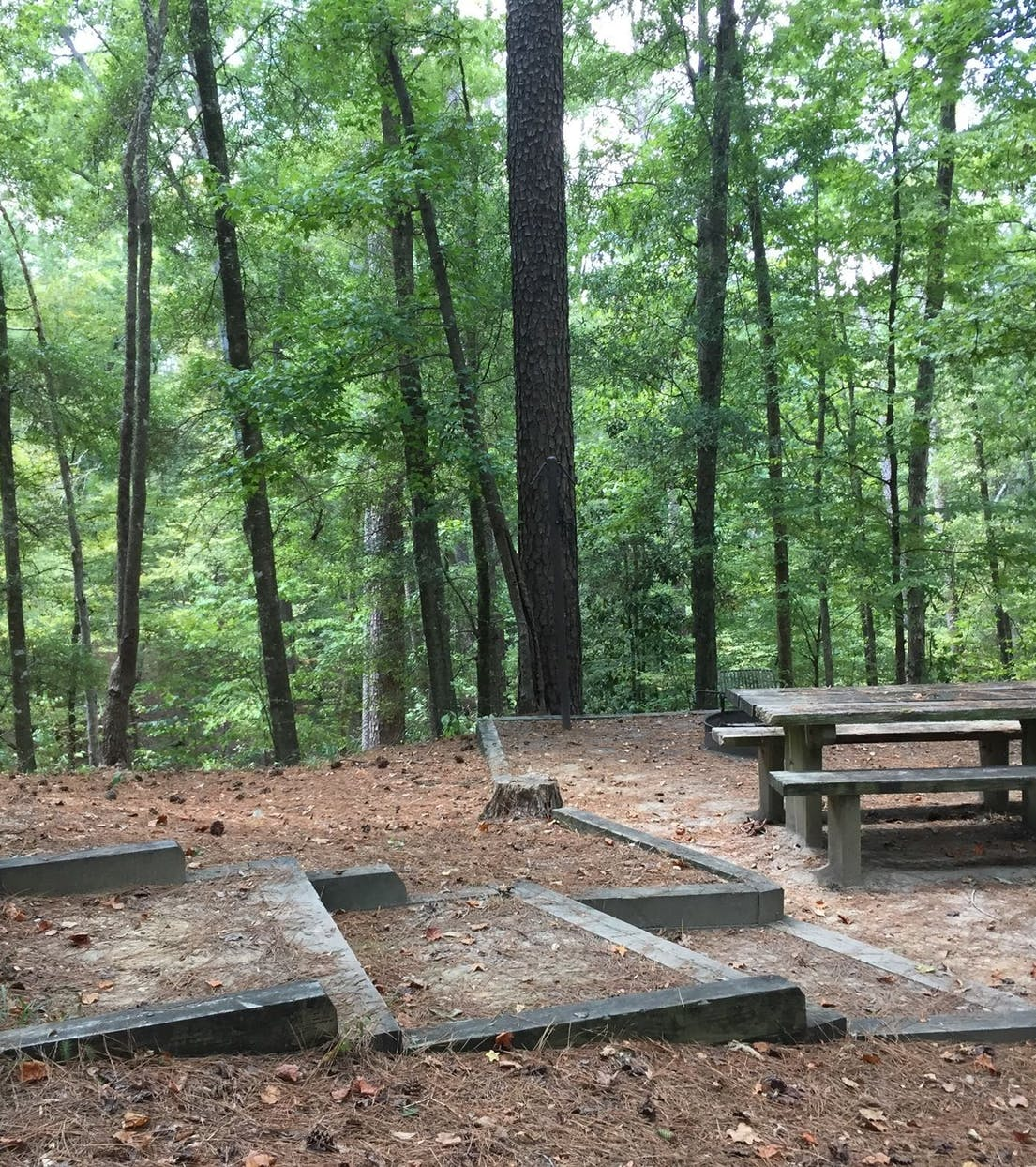 The Best Camping Near Homochitto National Forest